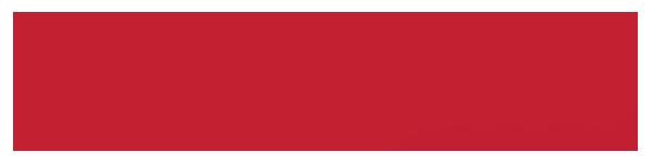 INSIGHT Magazine Logo